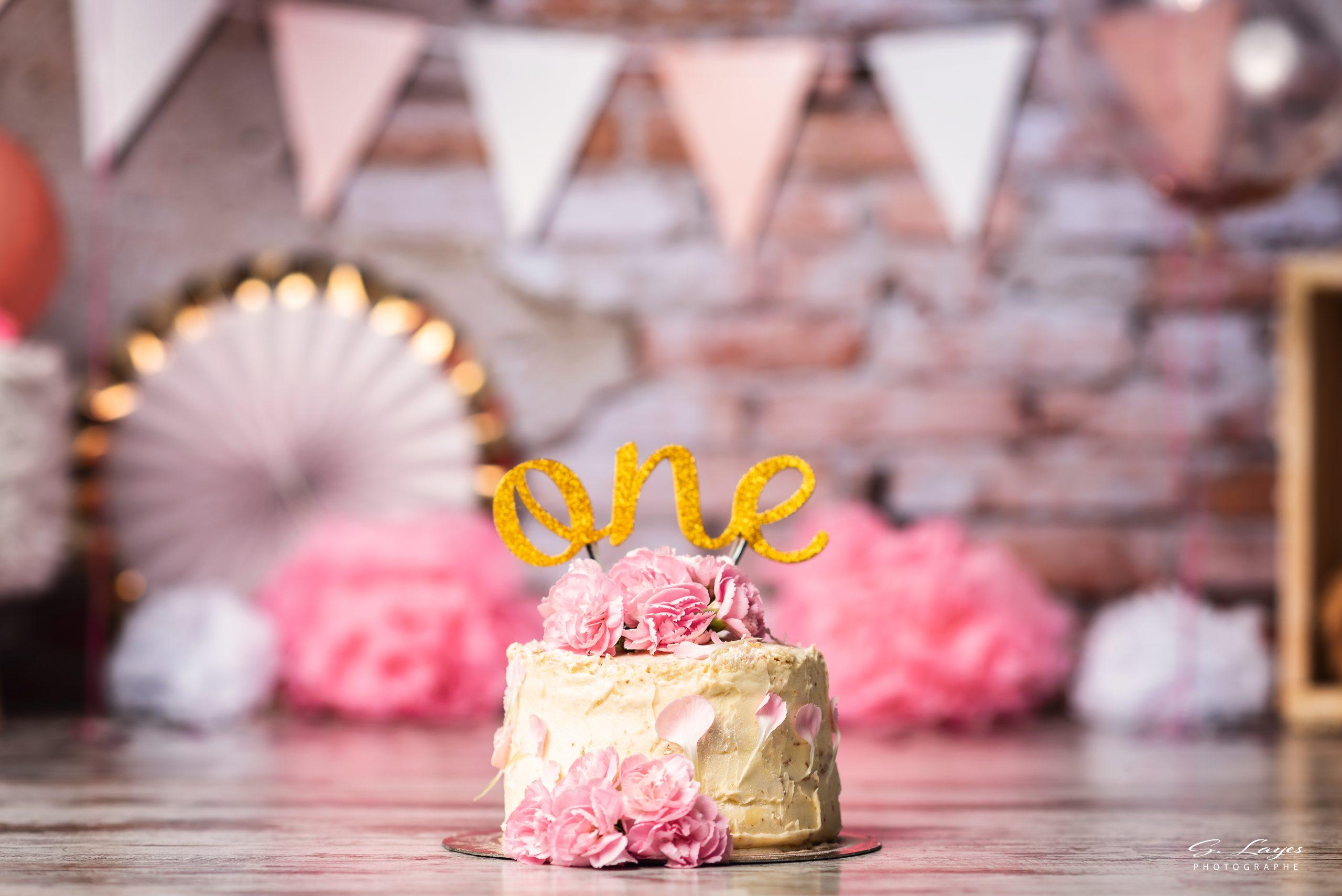 Smash the cake stephanie layes photographe